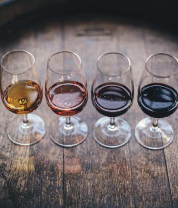 Best Wine Recommendations for a Beginner